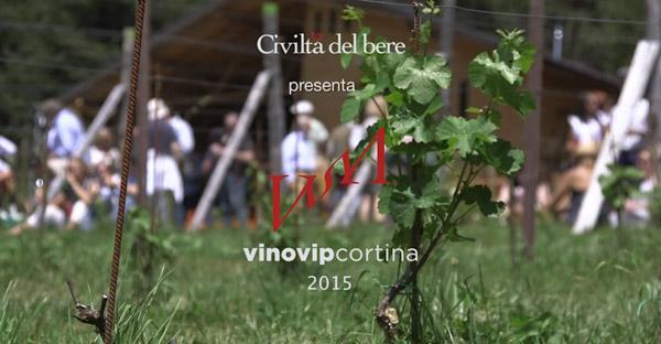 vinovip-2015-video