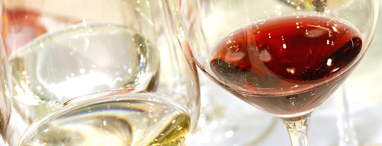 Tutti i vini VinoVip 2017
